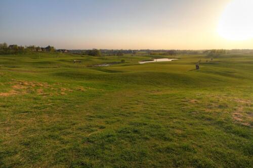 Golf Course (5)